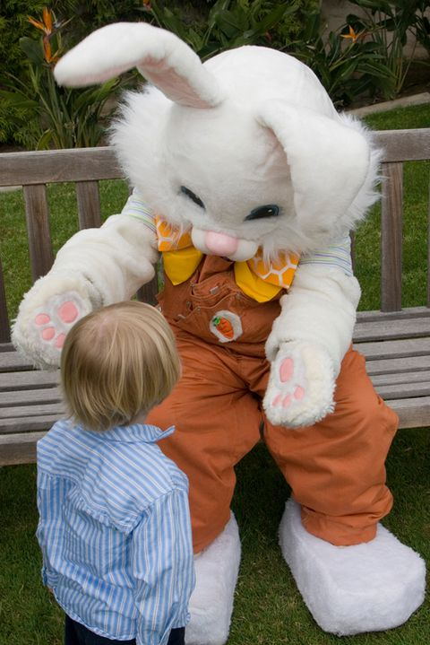 Шта does the easter bunny look like?